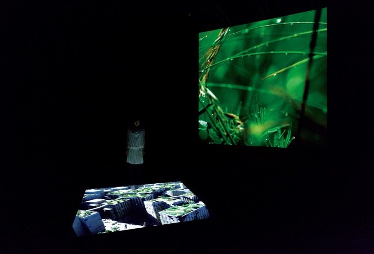 Promise Park, Two channel video with sound, installation view, vertical screen, 7200×7200mm, horizontal screen 2100×2100mm, 2013